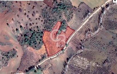 MANİSA DEMİRCİ'DE 10.249 m2 SATILIK FIRSAT TARLA