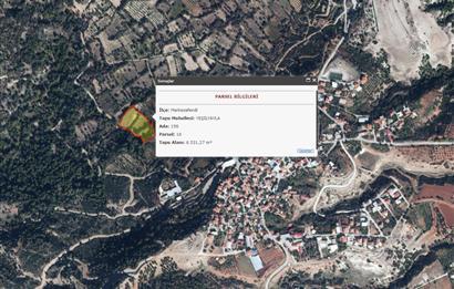 Yeşilyayla da Yatırımlık Fırsat 6.532 m2 Satılık Bağ-Bahçe