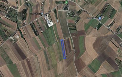 Silivri Seymen'de Satılık 5840 M2 Tarla
