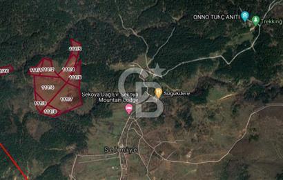 Armutlu Selimiye'de Farklı m2lerde Satılık Arsalar (Bölgede Tek)