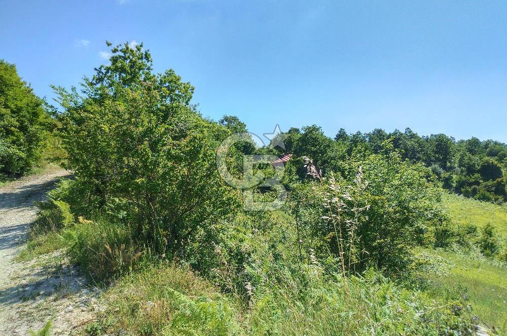 Kandıra Çakmaklar Köyünde Elektrik ve Suyu Olan Manzaralı Tarla