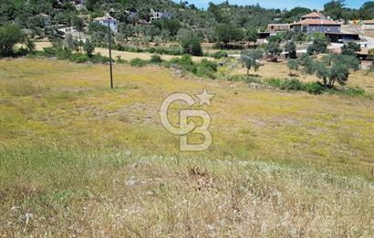 Bodrum Milas Pınararası' nda 4 Parsel 6200m2 Satılık Tarla
