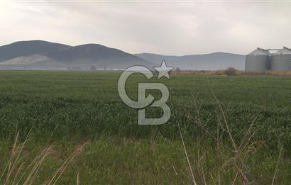 TEOK'dan Torbalı'da KDV Avantajlı Sanayi İmarlı Satılık Arsa